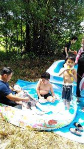 夏イベント(プール)